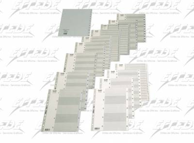 INDICE PLAST BANTEX OF (1-31) GRIS